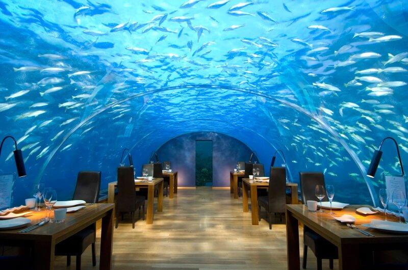 att göra på maldiverna - äta under vattnet