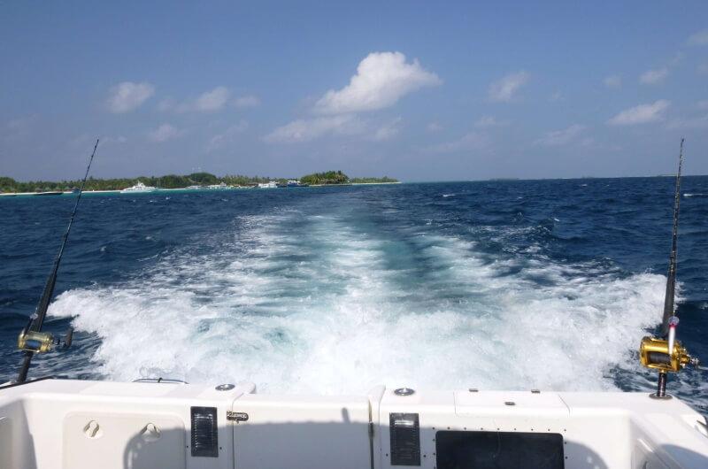 att göra på maldiverna - fiskeutflykt