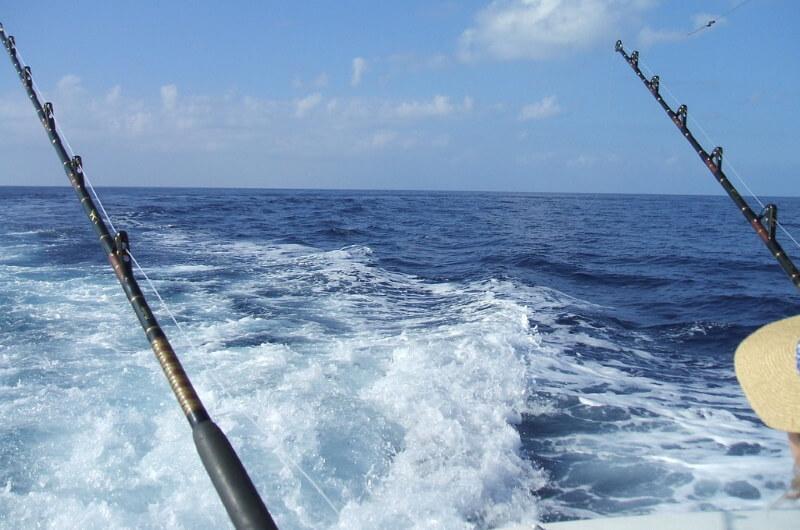 fiske maldiverna