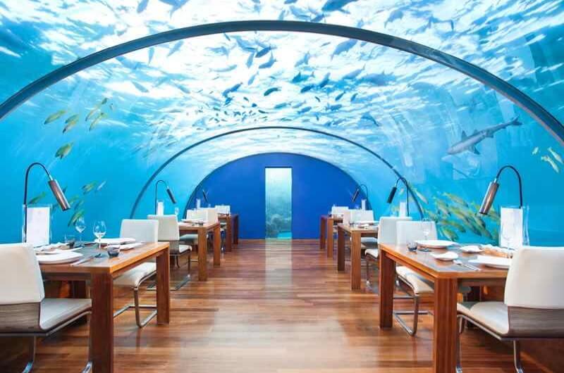 undervattensrestaurang maldiverna - conrad maldives ithaa