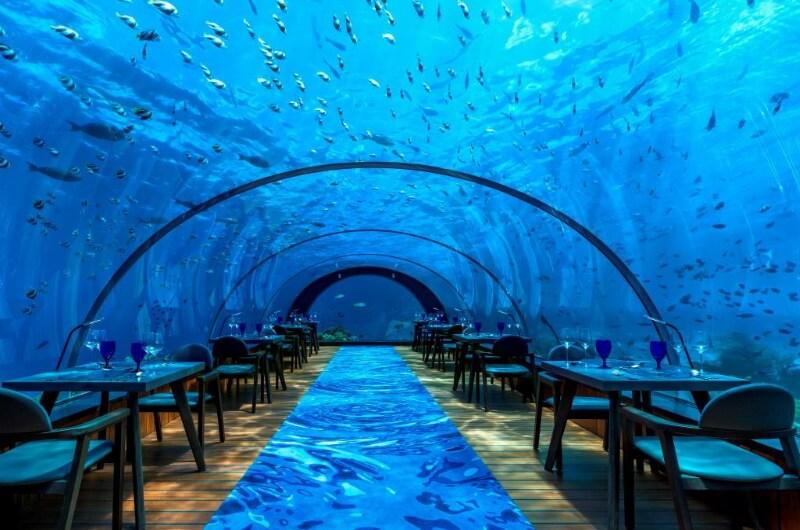 undervattensrestaurang maldiverna - hurawahli Island resort 5 8